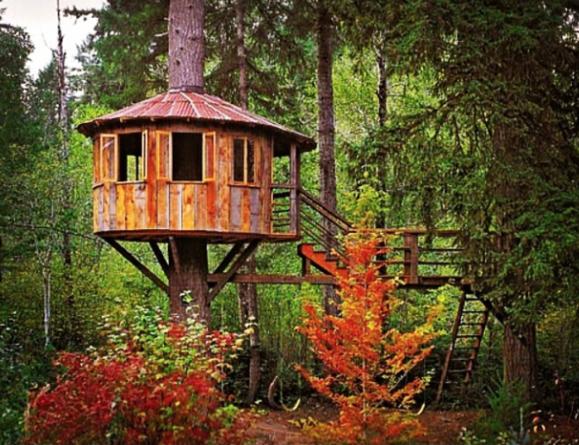 circular-tree-house
